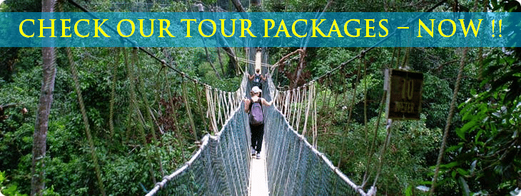 Booking-tour-packages-in-Costa-Rica
